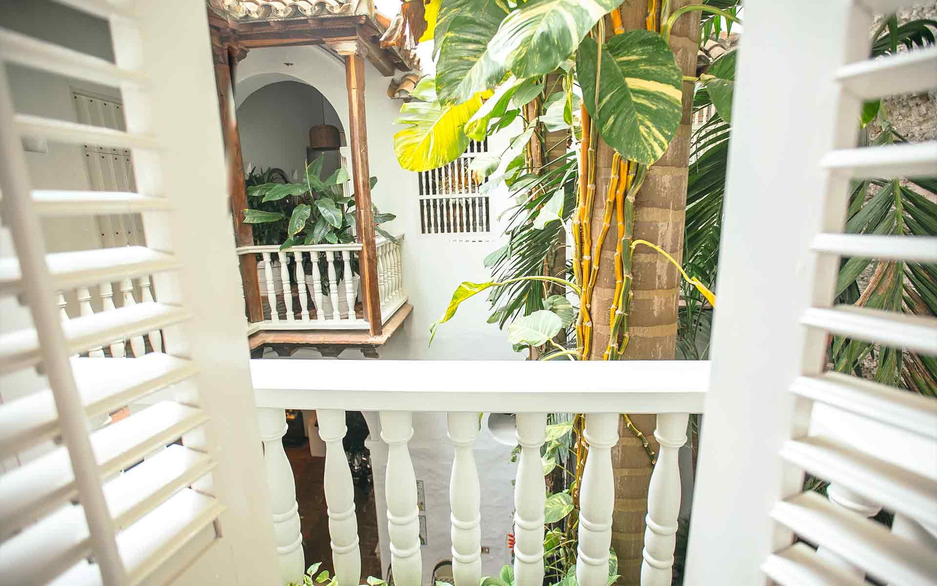 Vista desde el balcón al patio interior con palmera enorme desde la habitación Toucan en Amarla en Cartagena