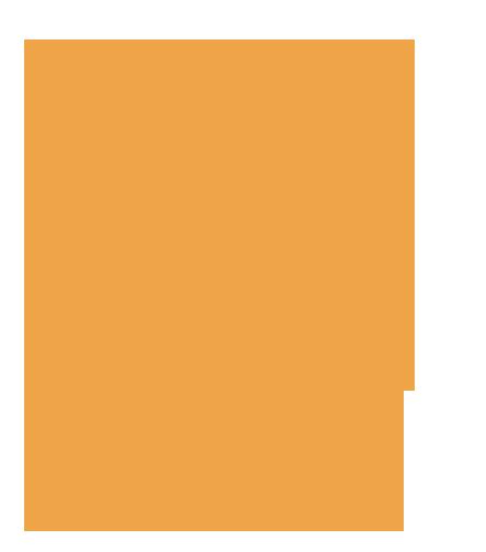 Ilustración de colibrí en naranja